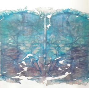 Butterfly Shroud
